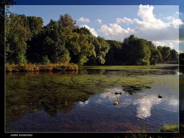 Бывший Воронцовский парк
